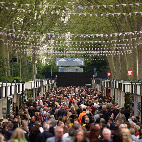 Highlights of the rhs chelsea flower show 2014 gardening for Indoor gardening expo 2014